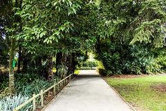 Lugares que ver Jardín de las plantas de Nantes