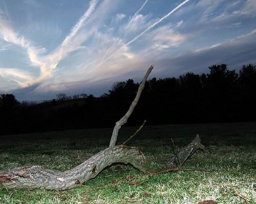 sky cloud tree field 1025fav landscape dead topv555 branch pennsylvania flash echo 100v10f creepy spooky flickrfirst mysterious rebuck