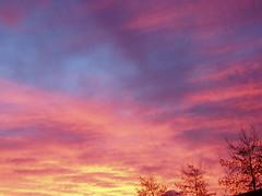 yellow pink blue purple sunset