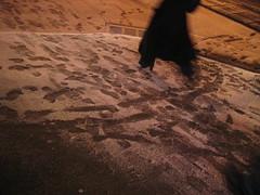 snow step