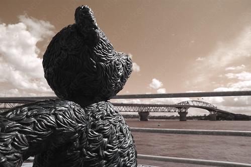 Bear & The Bridge