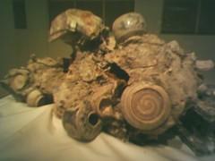 Ancient hoi an relics