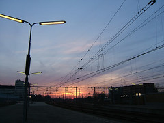 sunset through cables 2