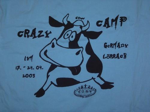 crazy cows yeehaa