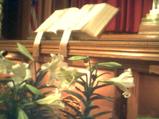 Bible and Lilies