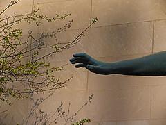 Spring, Chicago, 2004
