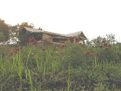 Villanya Abah Jamal