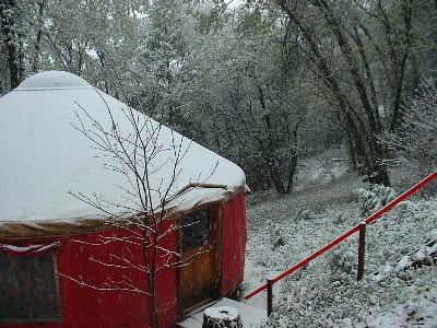snowyurt2
