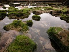 Piedras de la playa