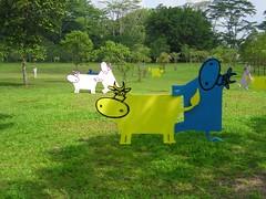 Comfort Cows