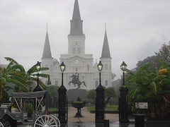 Me Likey New Orleans