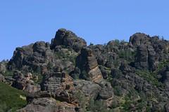 Pinnacles-44