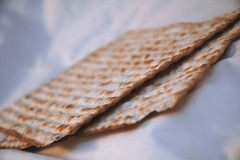 Passover - Shalom | by paurian