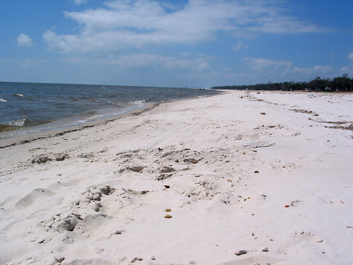 trees sky beach water senior clouds mississippi sand day pass christian ms skip passchristian