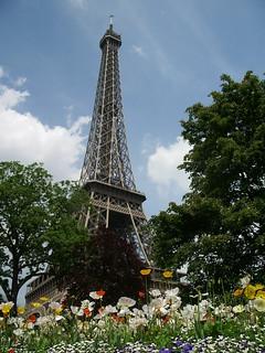 La torre | by bleucerise