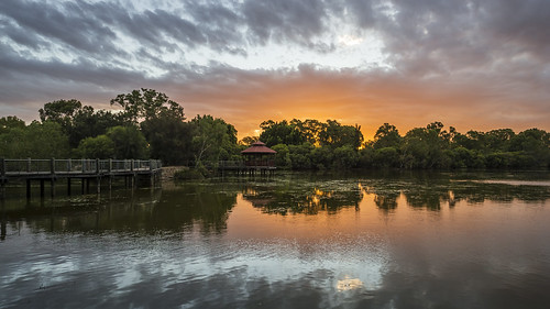 sony stevekphotography slta99 alpha a99 sal1635z variosonnar163528za variosonnart281635 za carlzeiss scenery scenic sunset sundown clouds reflection landscape water wideangle nature trees lake outdoors beauty tomatolake kewdale westernaustralia australia