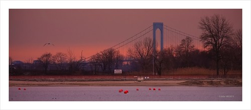 sunset newyork sunrise dusk bronx cityisland orchardbeach