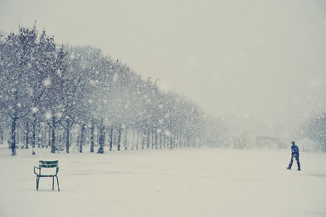 Paris et parisiens sous la neige (DSC_3124)