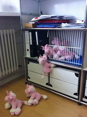 Escape of the ponies