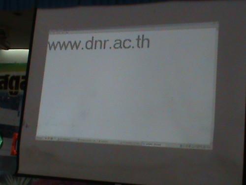 DSC00540