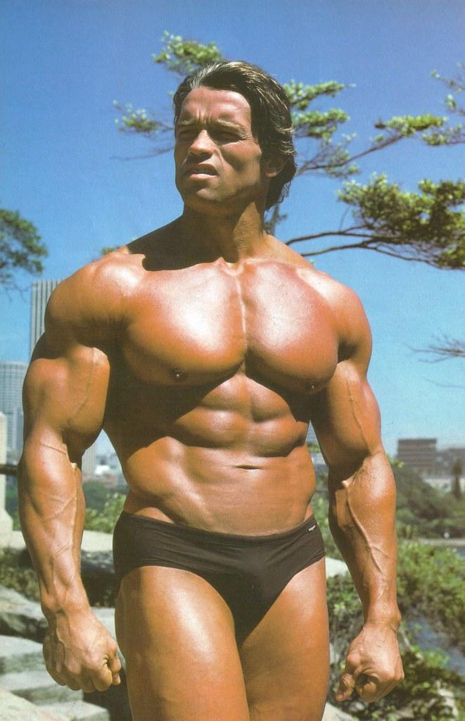 Schwarzenegger's physi...