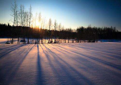 trees winter shadow sky sun snow tree landscape skiing imatra canon5dmarkii canonef2428