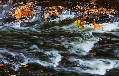 middletown autumn wadsworth johnjmurphyiii park connecticut waterfall fall newengland october usa 06457 foliage