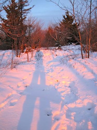 winter light sunset shadow snow outdoors hiking snowy berkshires mountgreylock berkshirecounty mtgreylockstatereservation mountgreylockstatereservation