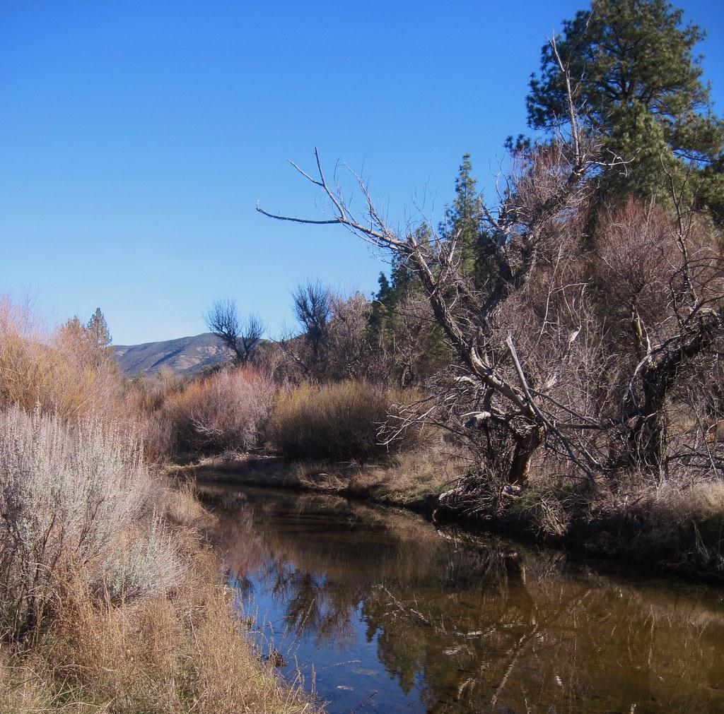 Pine Creek, Pine Valley, San Diego County, California ...