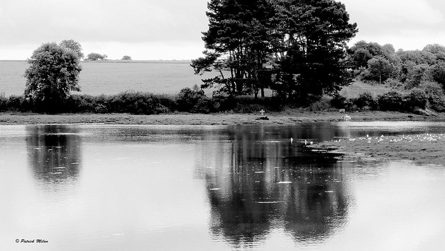 Cross reflection