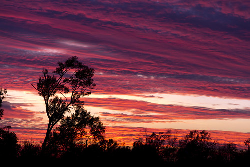louisiana neworleans sunsets