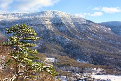 winter mountain snow virginia wisecounty powellmountain