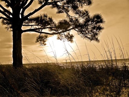 sunset seascape beach skyscape sunsets sunscape