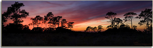 landscapes pano parks sunsets professionalphotographer stateparks 2470mm floridaimages lakekissimmee photoworkshops multiimagepano phototourguide