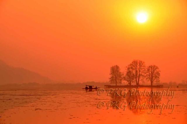 Chaar Chinar Skiara ... where on earth... only Kashmir
