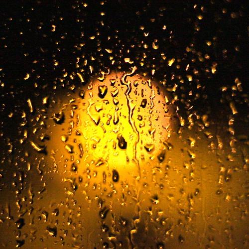 Rain bokeh | by kevin dooley