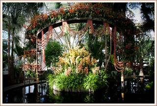 New Botanical Garden Orchid Show | by Photo GEM