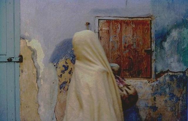 Femme médecin en Algérie. Journal de Dorothée Chellier (1895-1899)