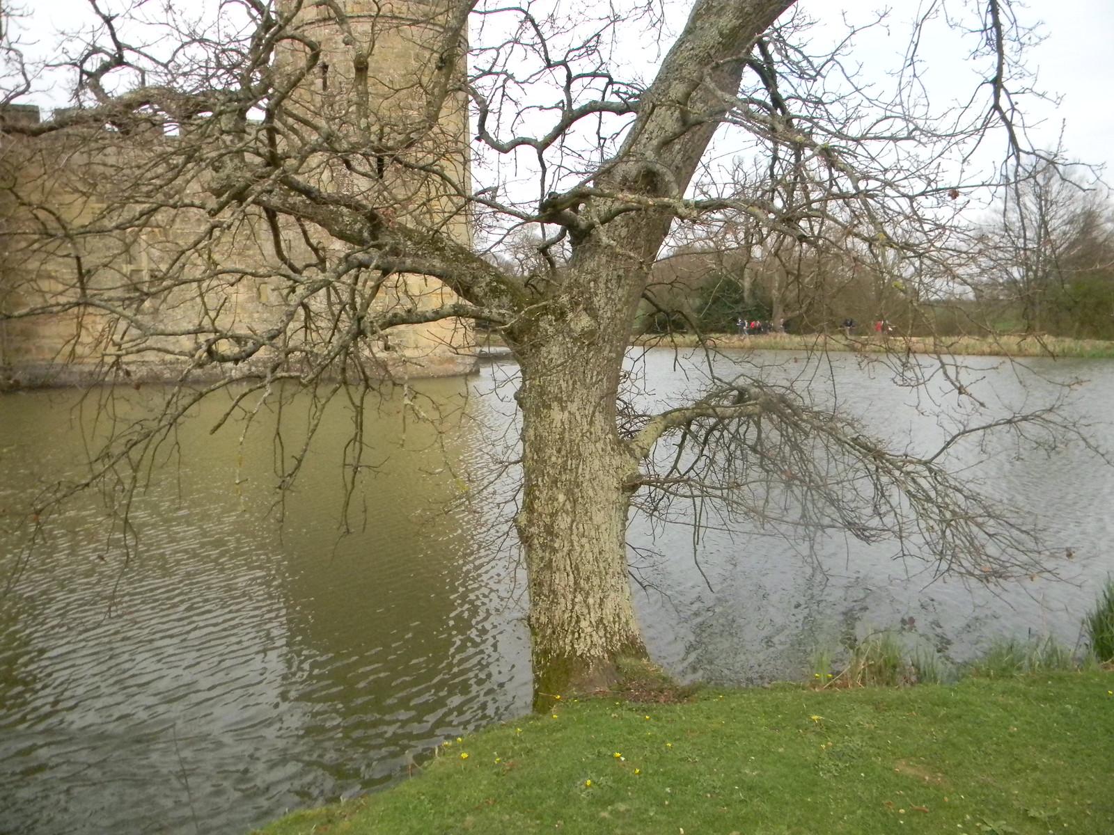 Bodiam Castle Robertsbridge circular (short)