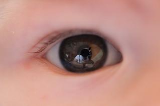Eye   by A. v. Z.