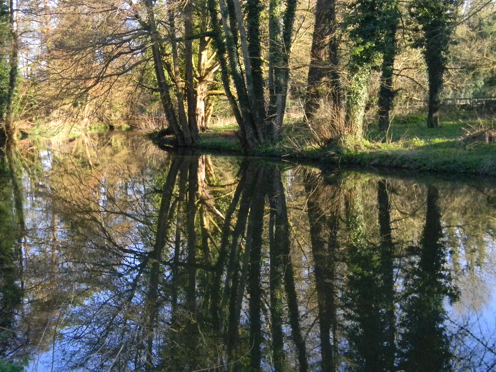 Reflections on the Wey Farnham to Godalming