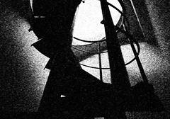 2003. március 23. 4:53 - Várnai Gyula: Systema Naturae