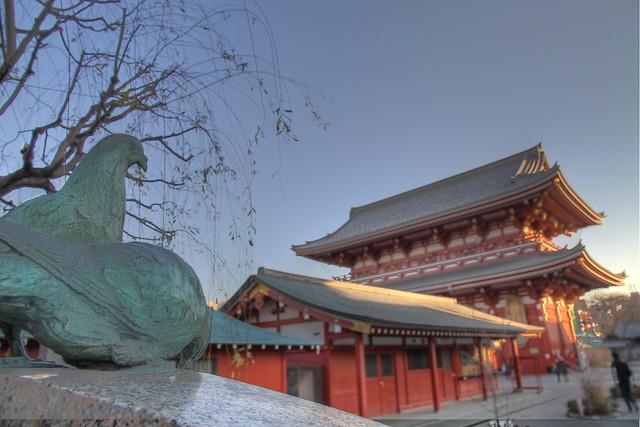 Iron Birds and Temple-Asakusa