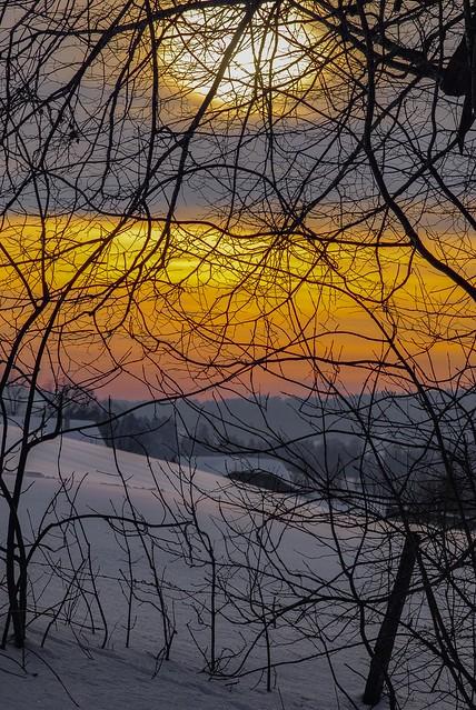 Taken in La Chaux-de-Fonds at Winter time.Canton of Neuchatel, Switzerland. No. 266.