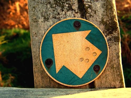 Signpost | by maroubal2