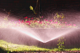 Sprinkler | by Kumaravel