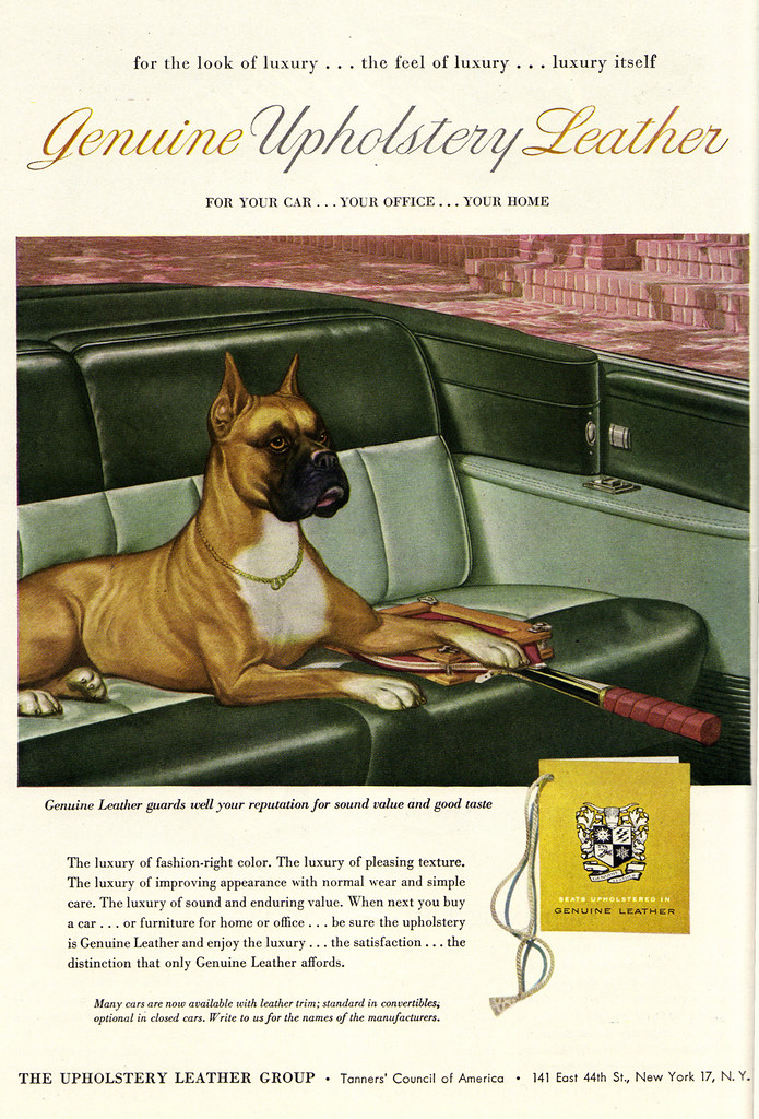 Vintage Ad #1,487: A Dog Who Appreciates Genuine Upholster