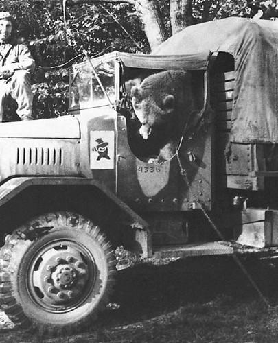 Wojtek en un camión con el emblema de su compañia