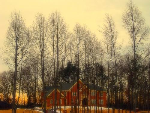 trees sunset house woods va dcist oakton