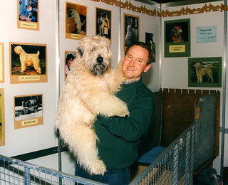 Early years of Discover Dogs, introduced to Crufts in 1994
